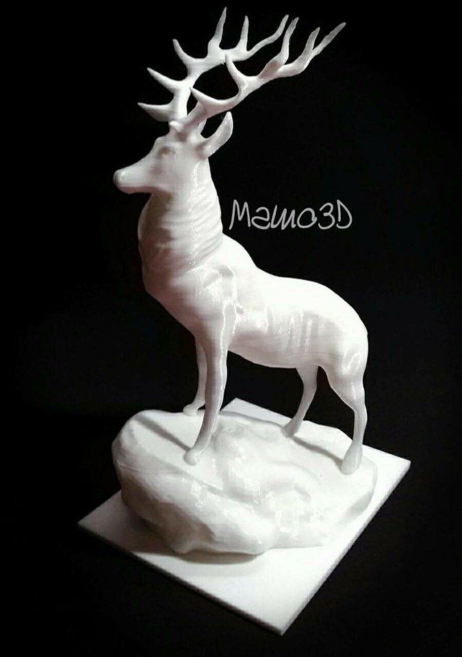 Cervo 3D – Matteo Mametti